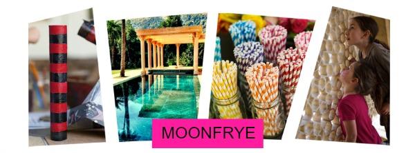 moonfrye-punky