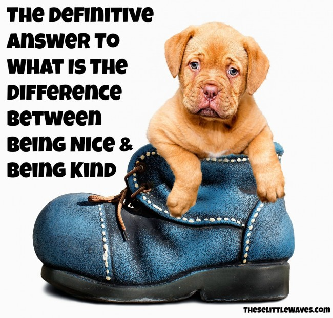 what is the difference between niceness and kindness